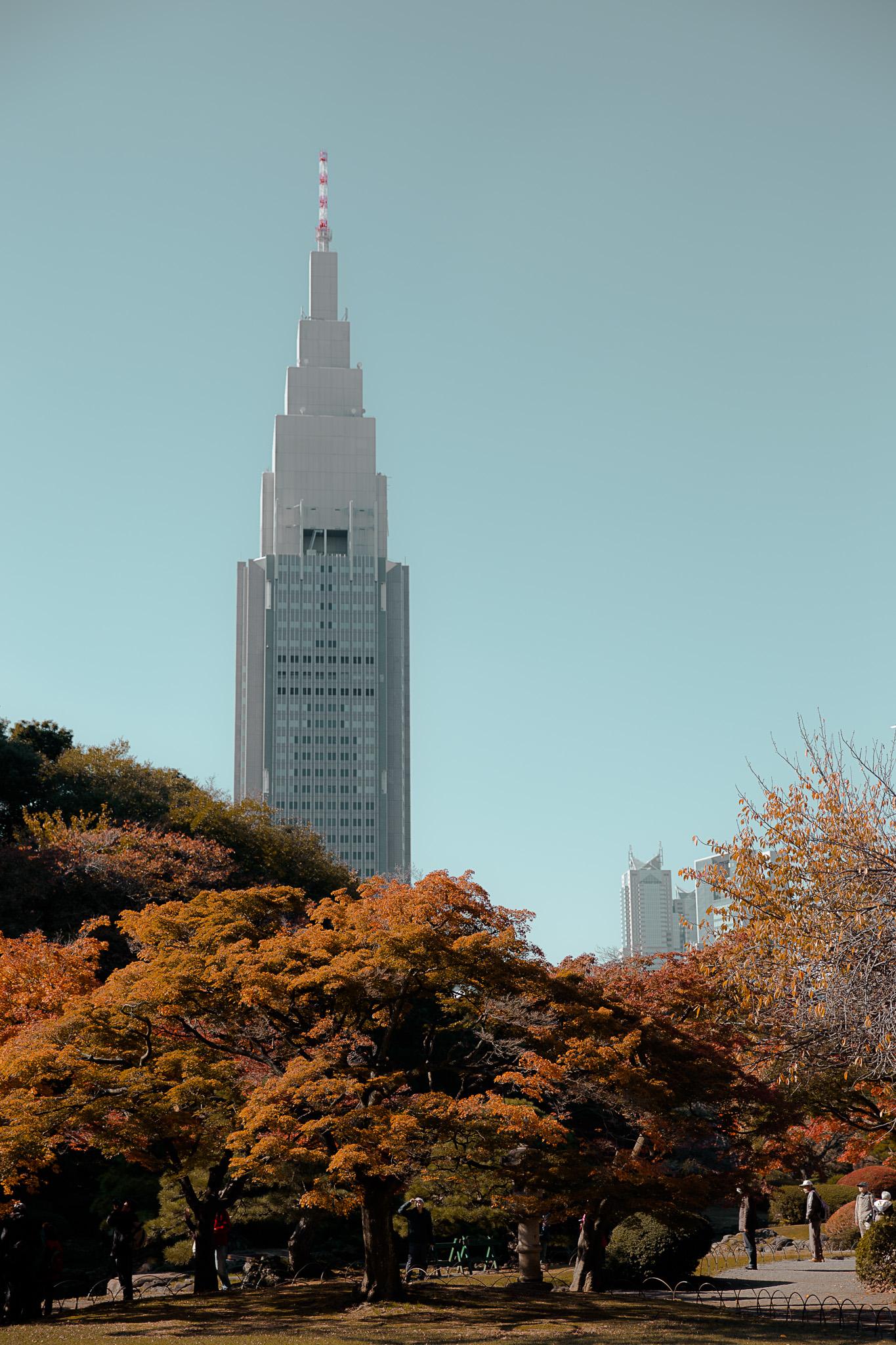 japan-65.jpg