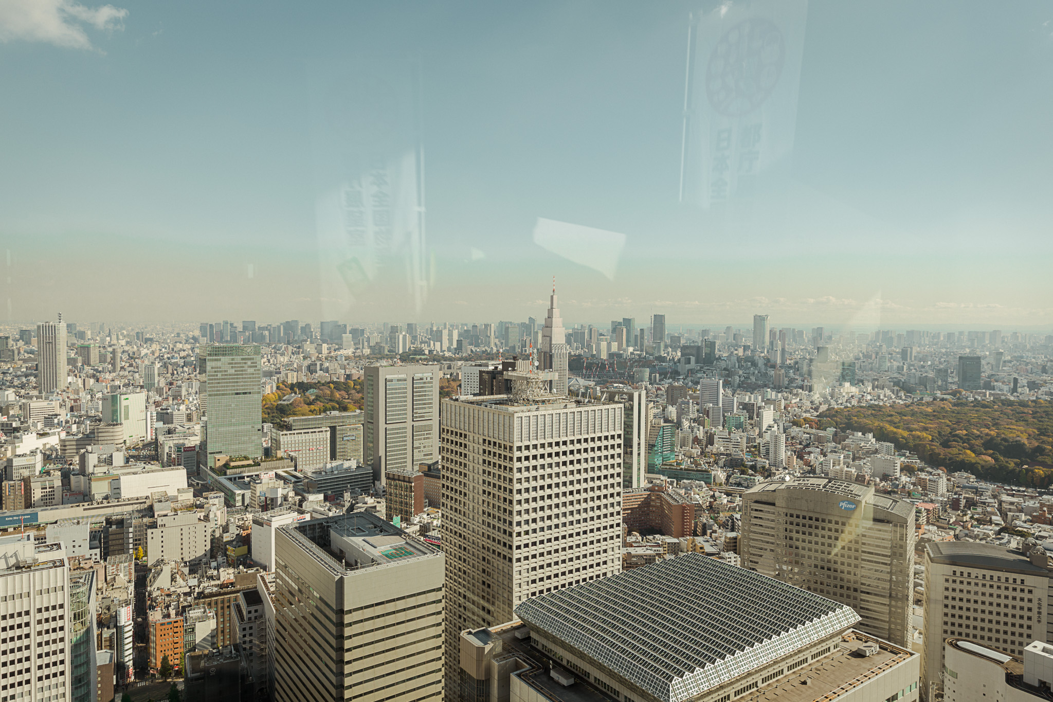 Tokyo Japan. View from Tokyo Metropolitan Government Building