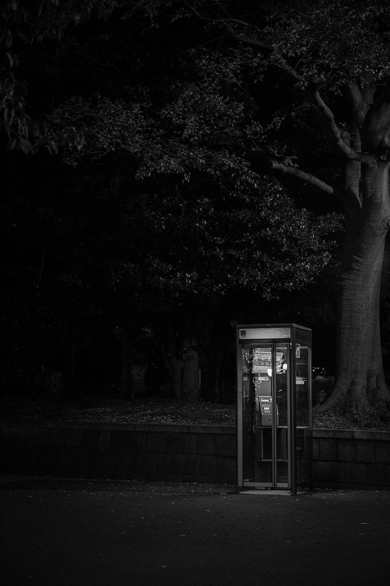 Telephone Box in Ueno Park, Tokyo Japan