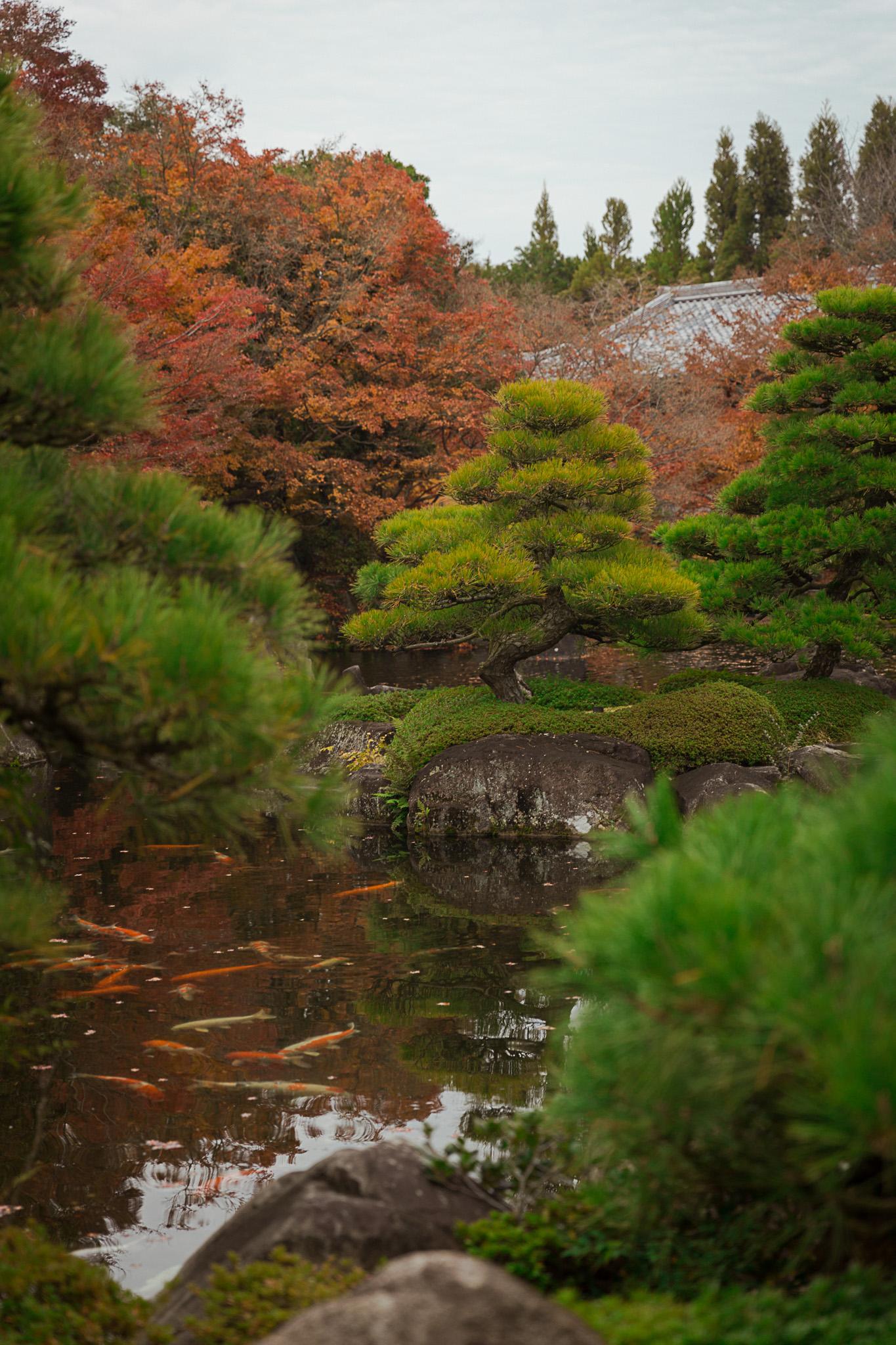 kokoen-garden-himeji-japan
