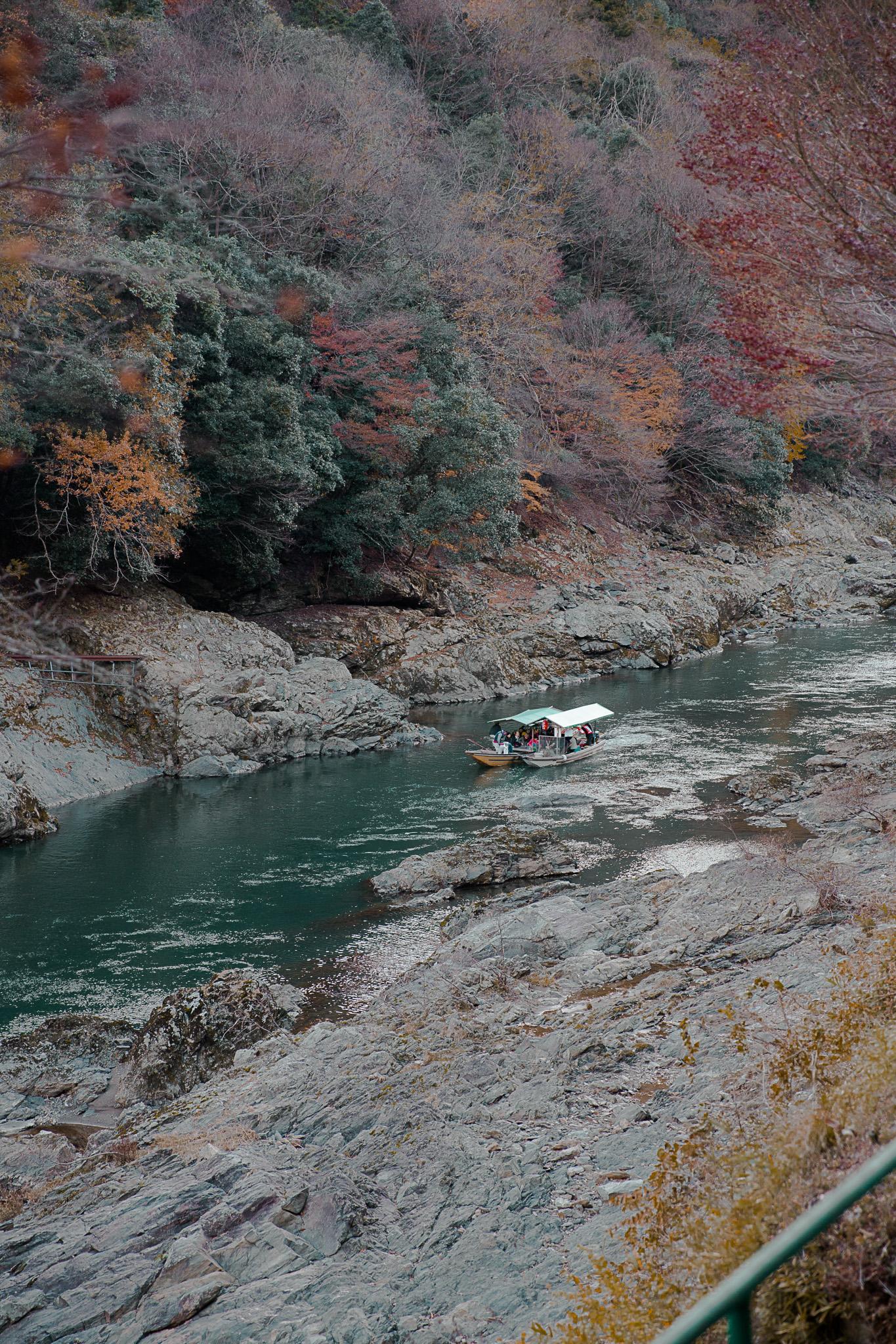 autumn-foliage-sagano-railway