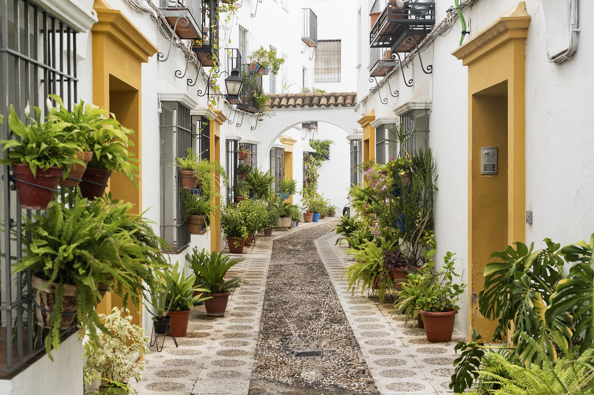Qué ver en Córdoba - La Judería | Foto: Claudio Giovanni Colombo | Dreamstime.com