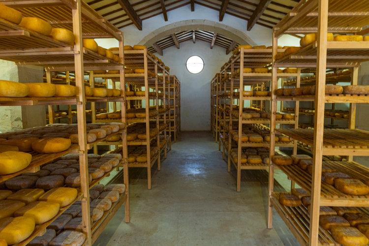 Qué ver y hacer en Menorca - Predio