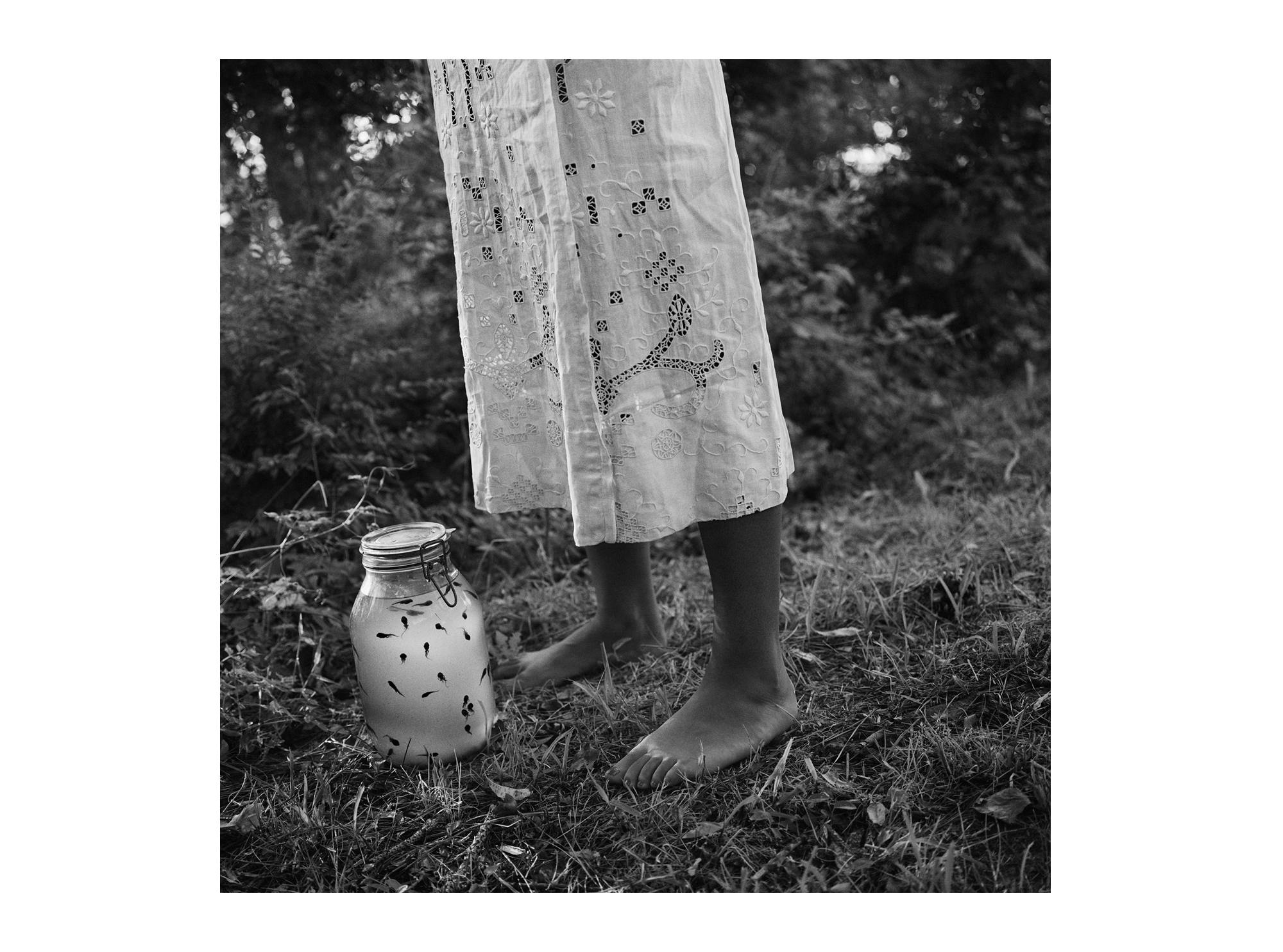 Septima with Tadpoles  , 1993.