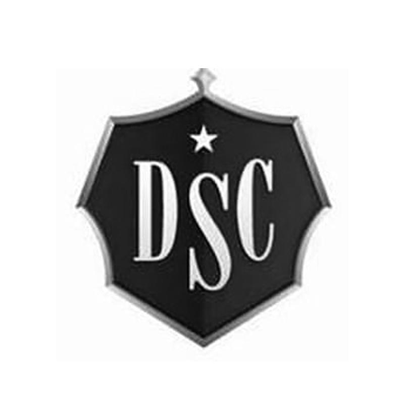 Desert Star Construction.jpg
