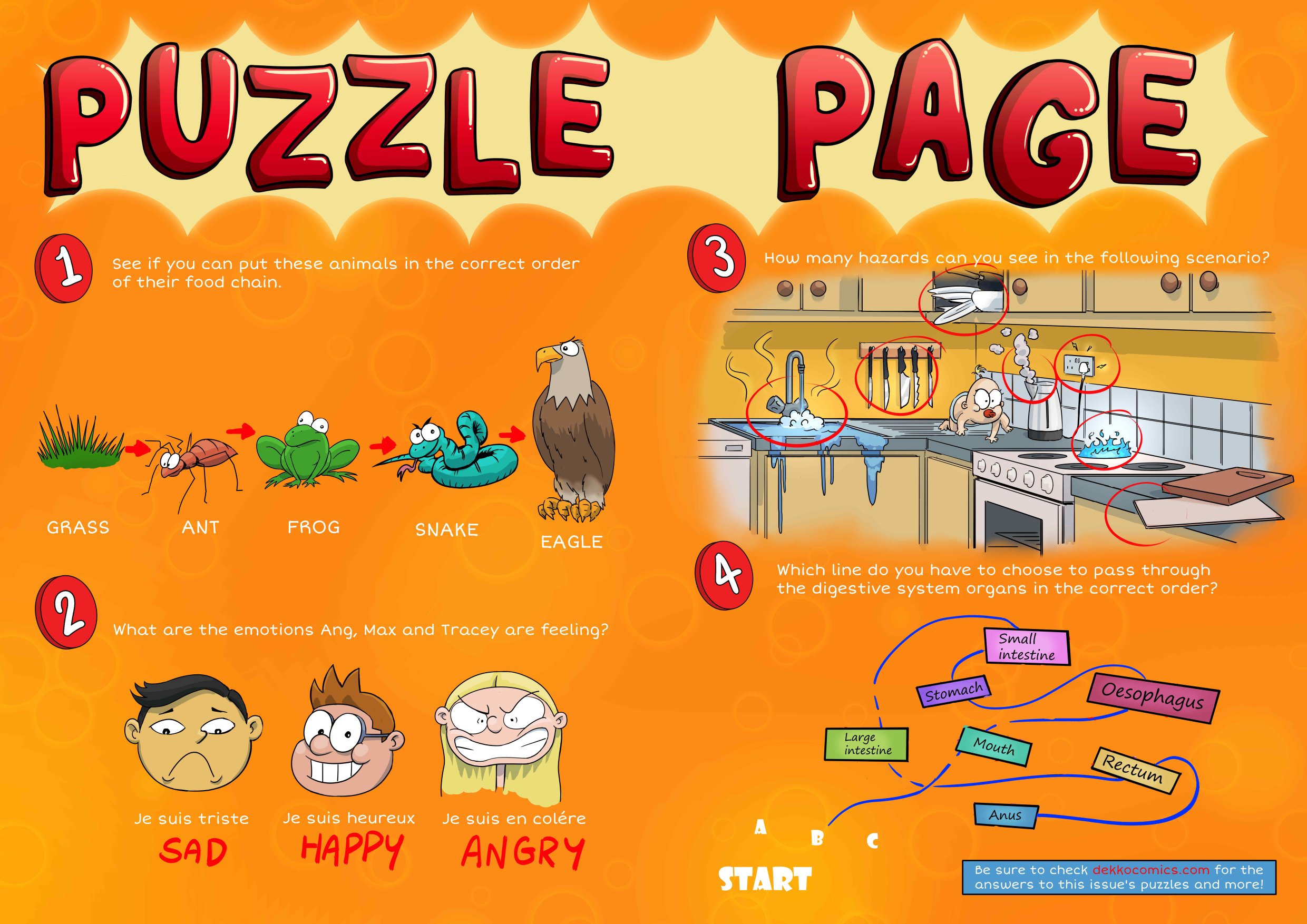 Puzzle Page solutions issue 10.jpg