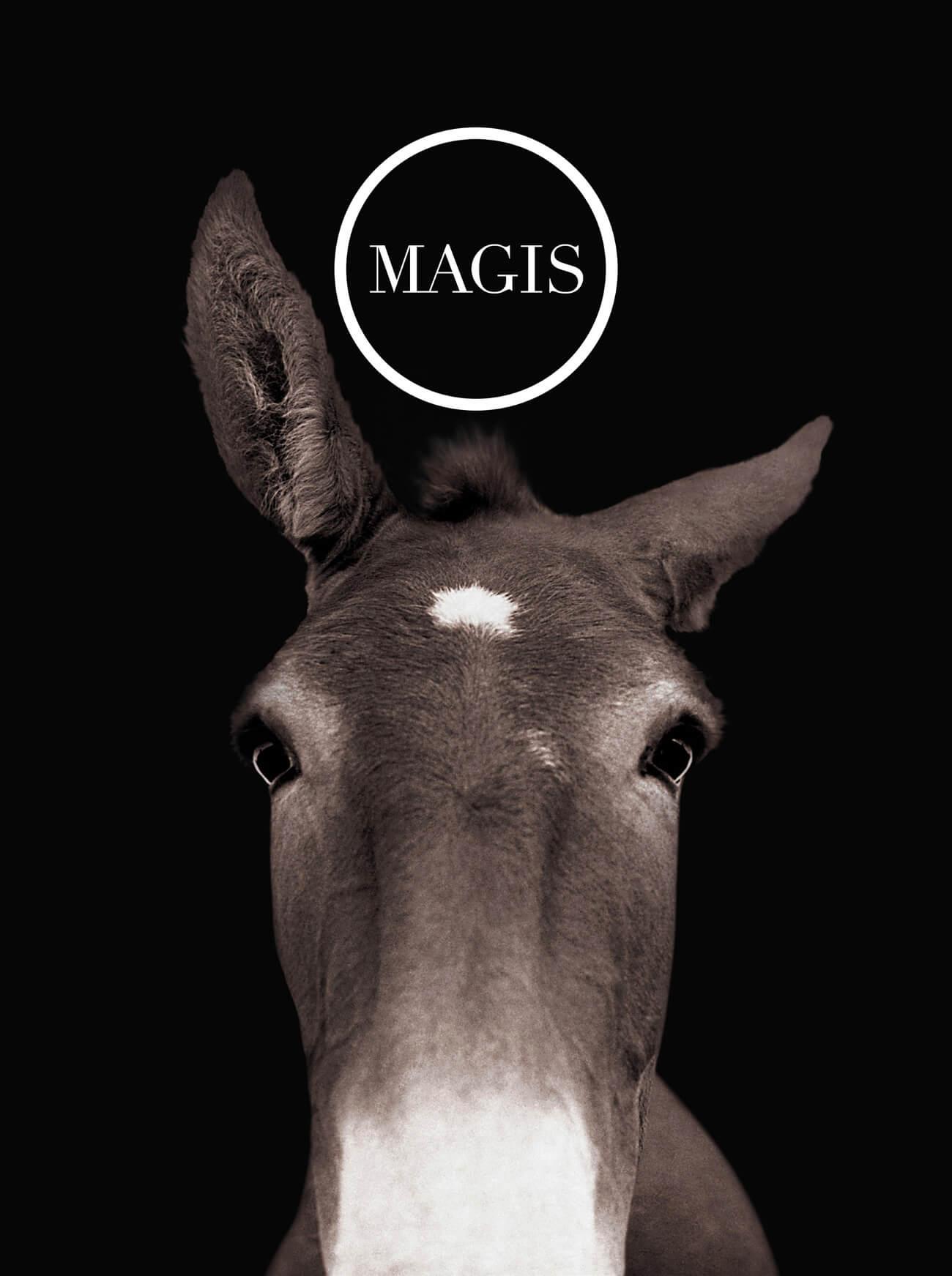 Magis cover 2007 w.jpg