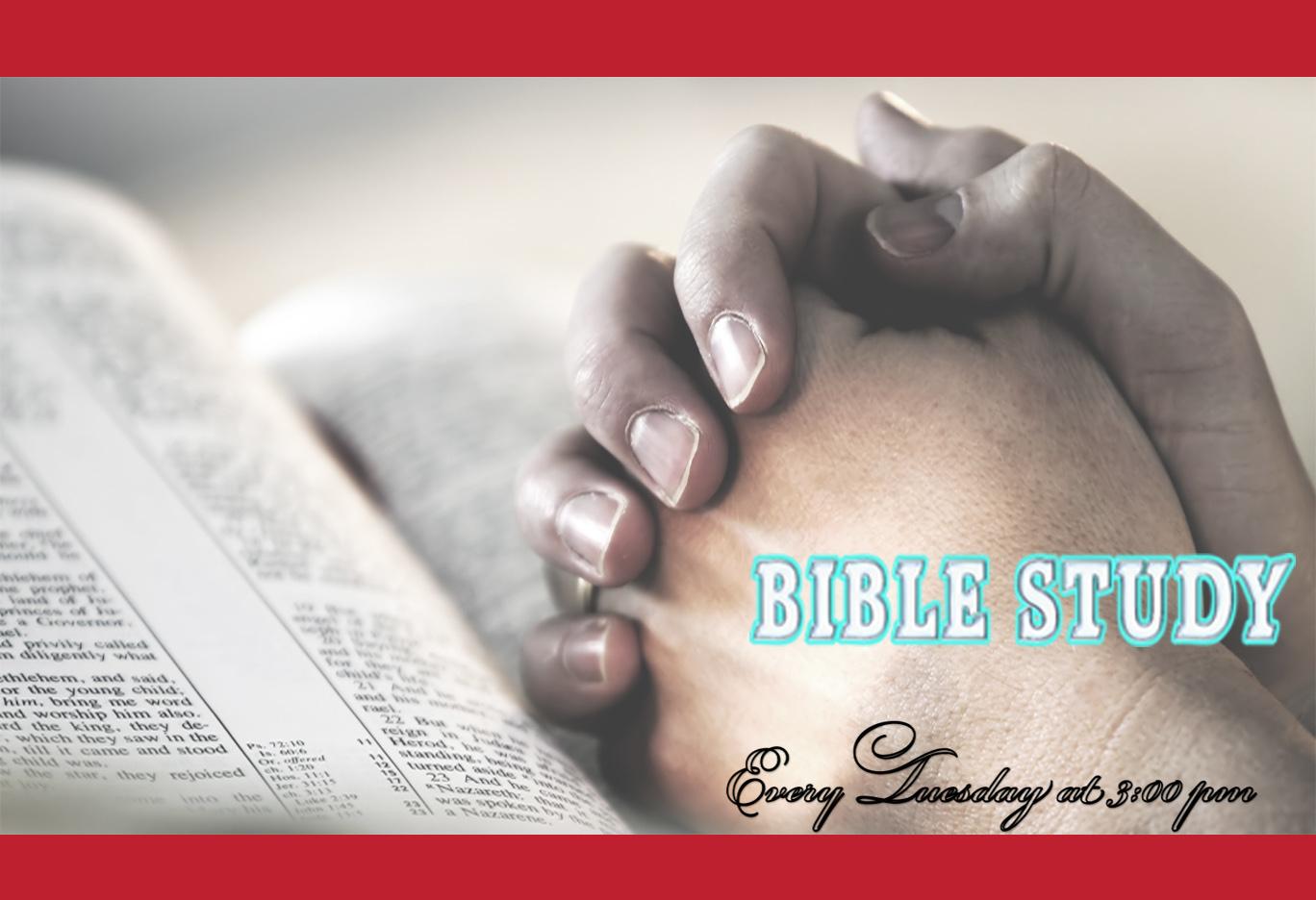 Bible Study Ministry Webpage 2018.jpg