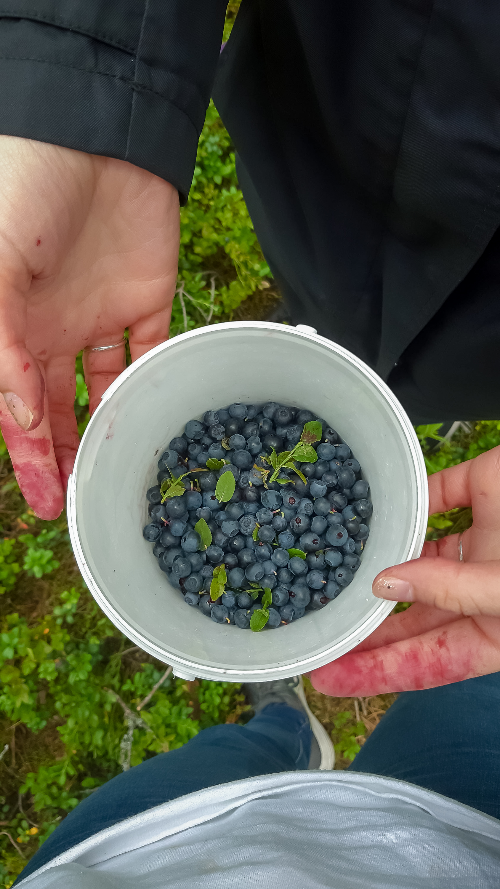 Berry picking from last week