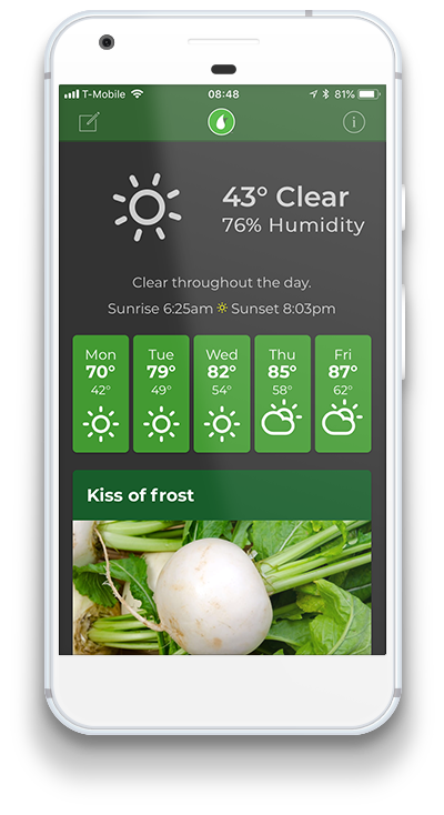 beta-app-home-in-phone-sm.png