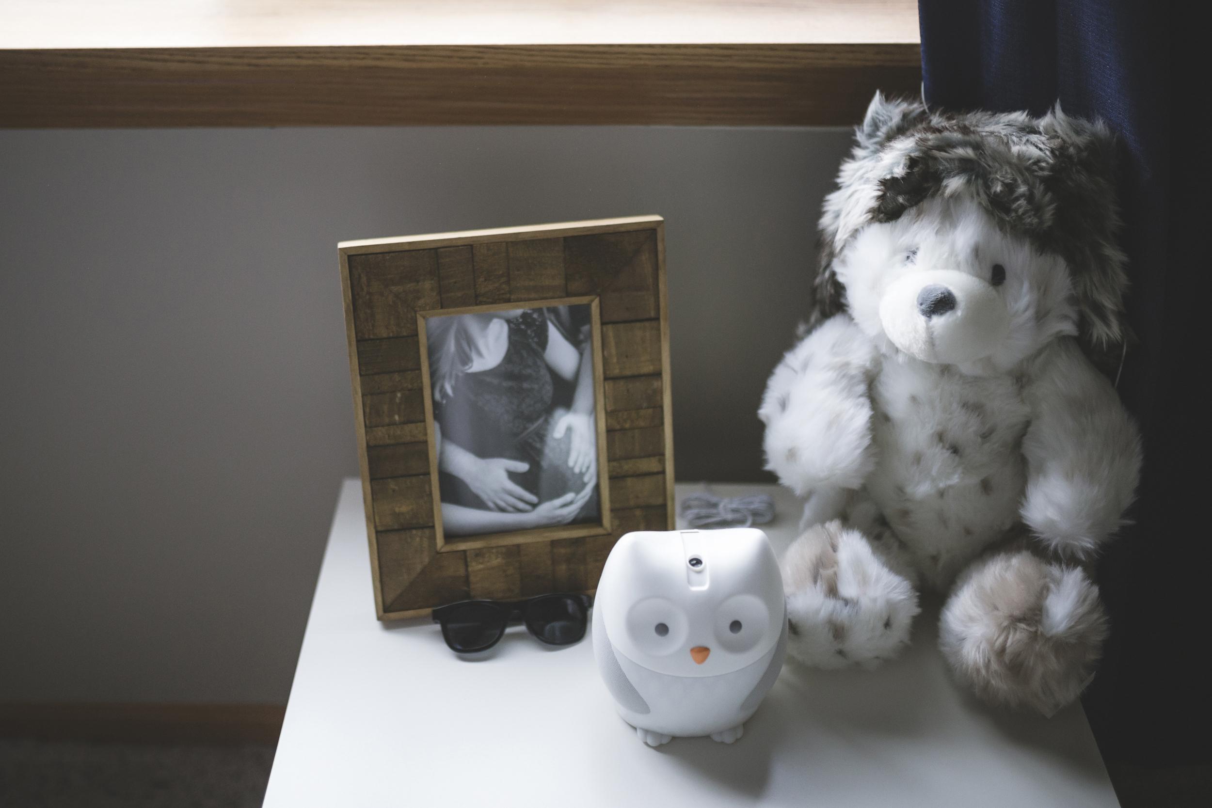 minneapolis in home newborn photographer-2.jpg