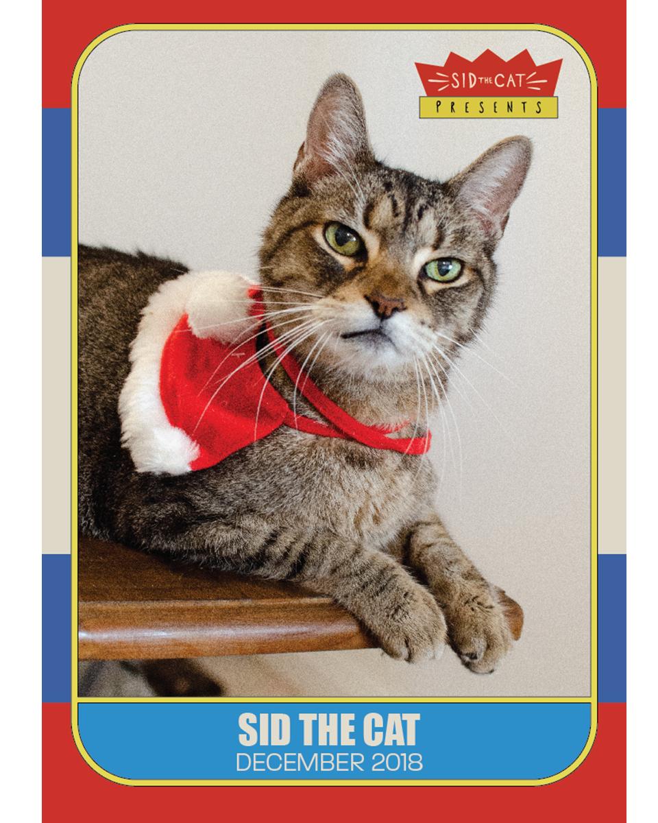 Sid dec trading card 1.jpg