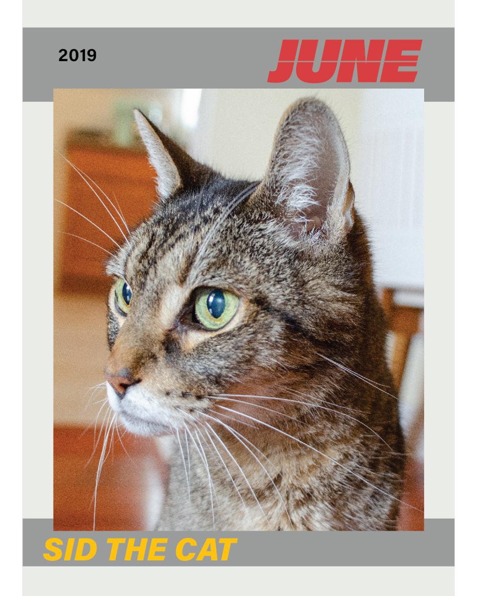 076 Sid June  Trading Card 1.jpg
