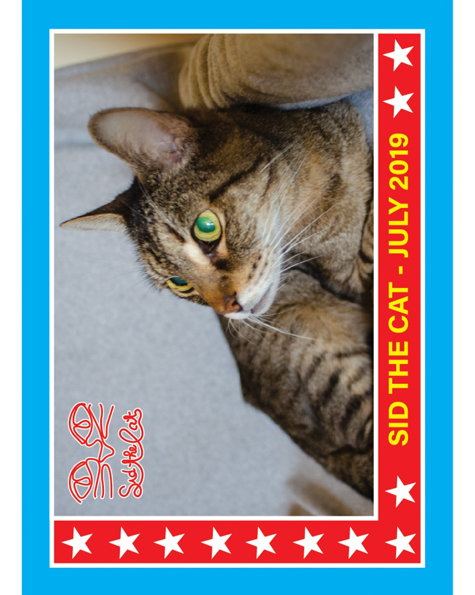 Sid July Trading Card 1.jpg