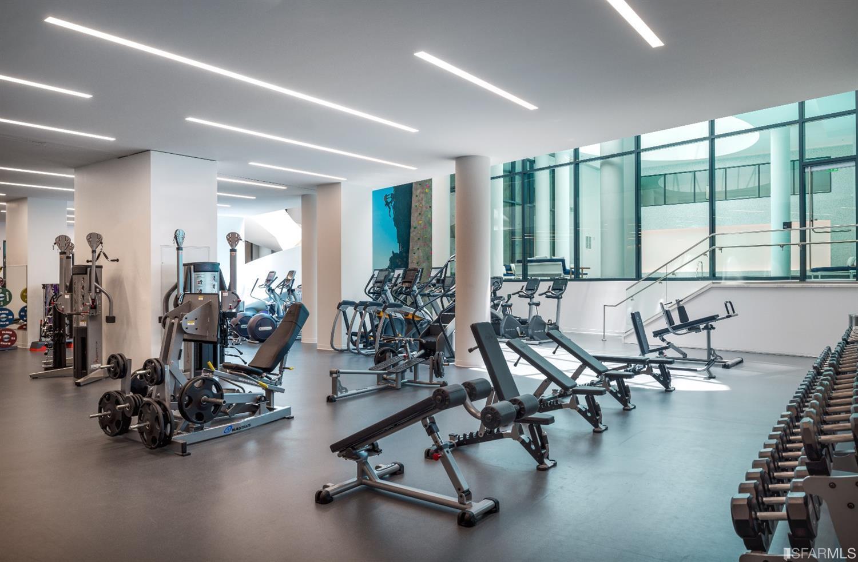 lumina gym.jpg