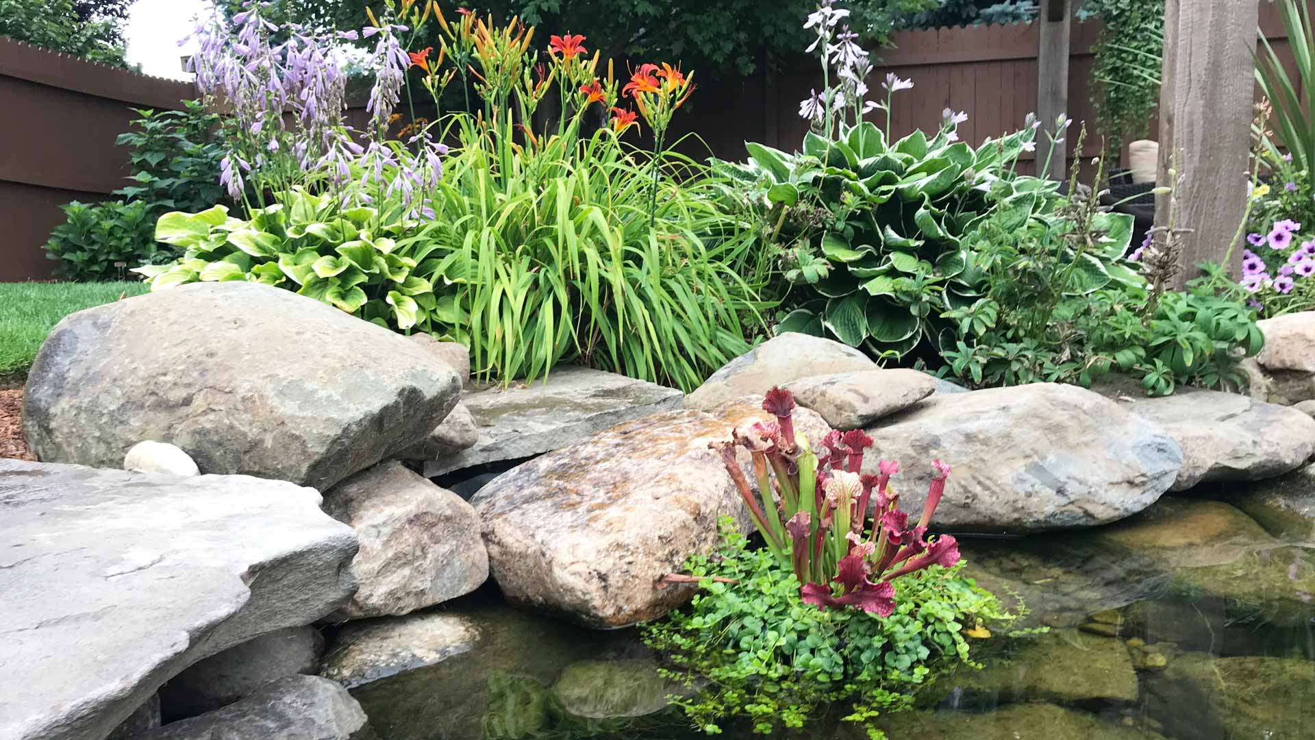 Water Feature Gardens
