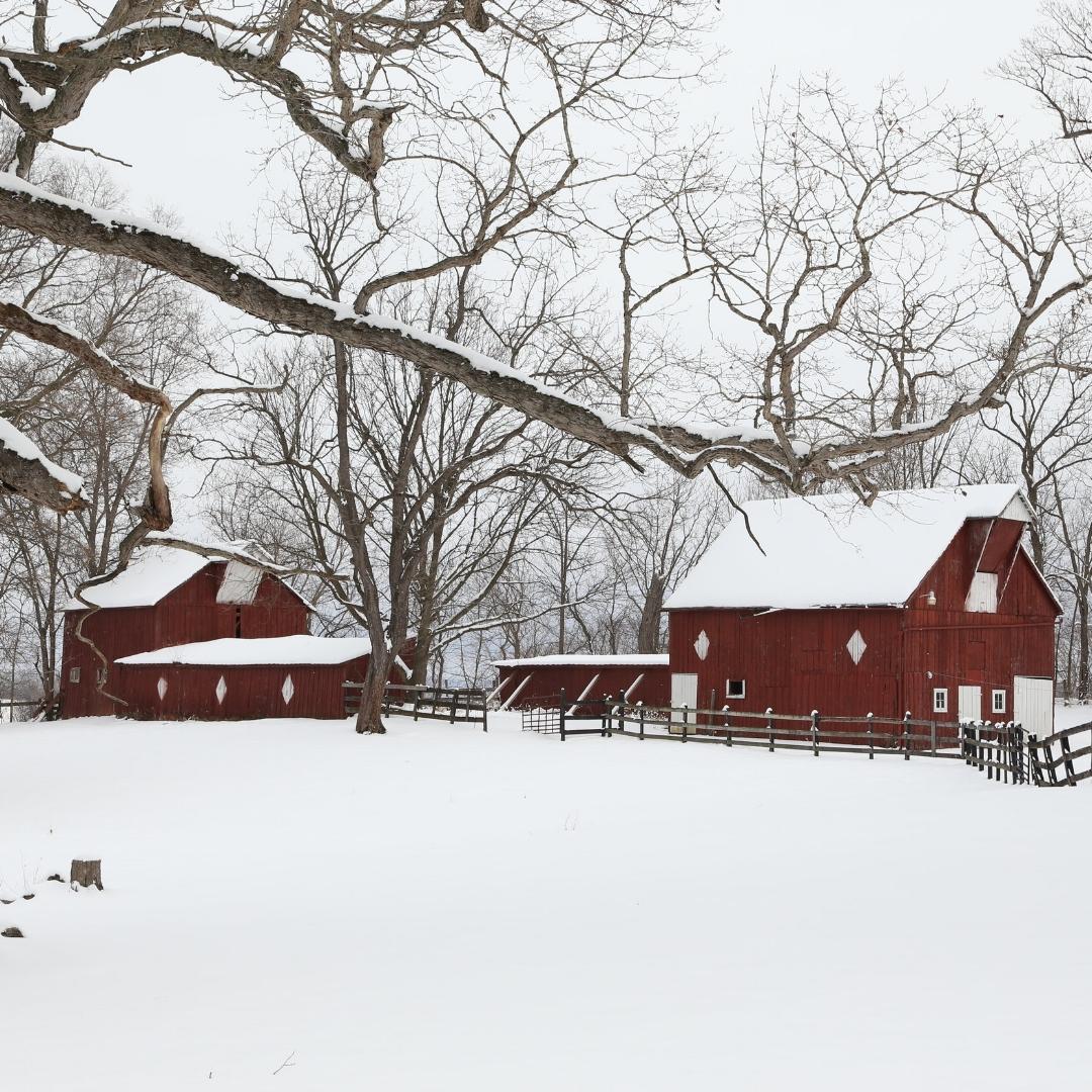 Unk - snowy barn.jpg