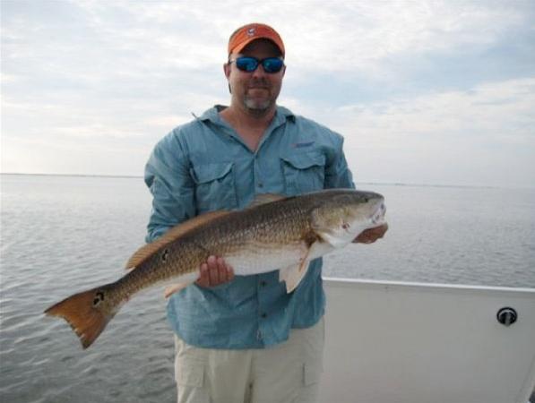 Jim fish.png