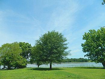 LAKE LIMESTONE