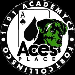 1512491959-Ace_s_Logo_No_BG.png