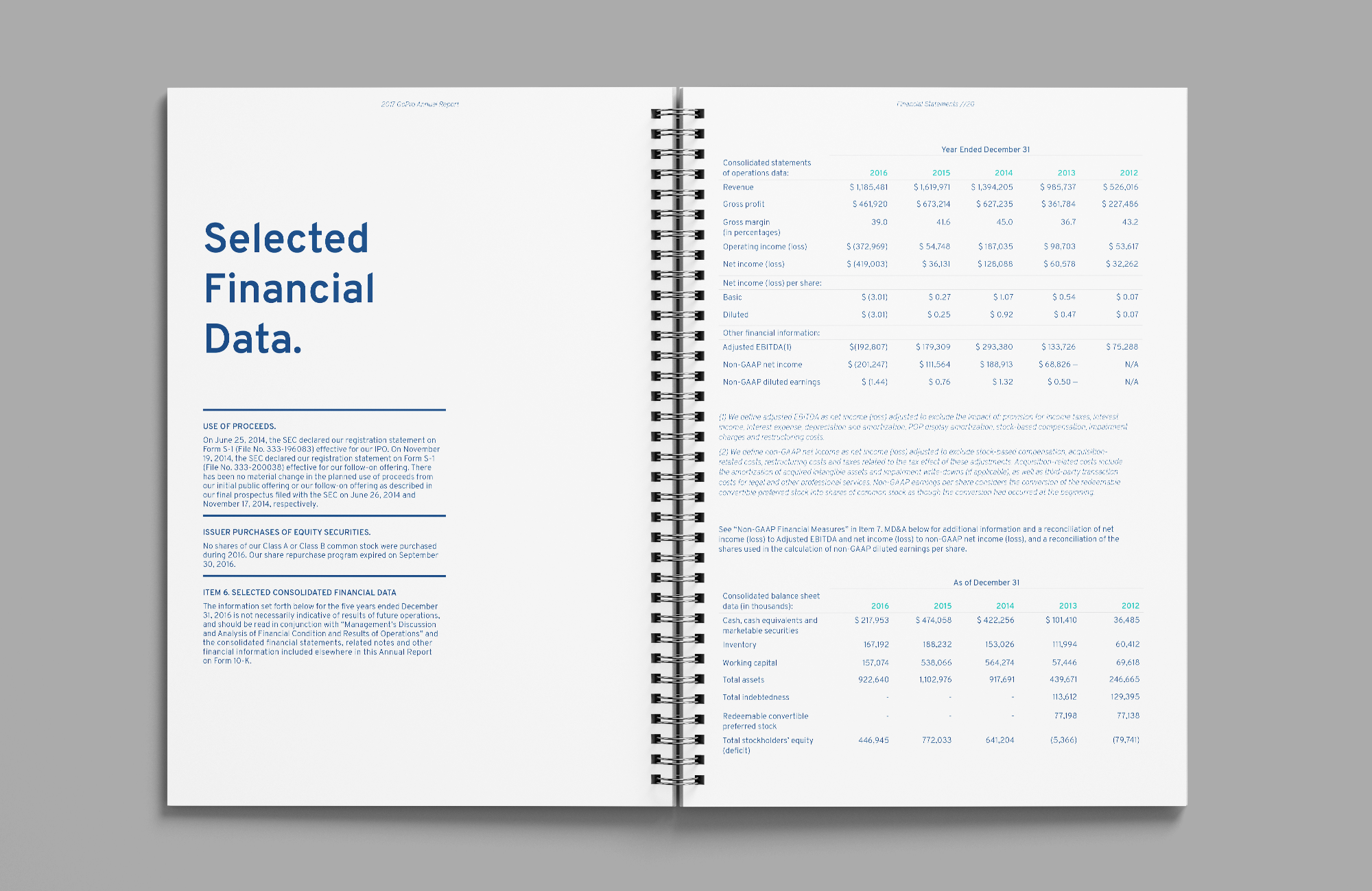 Annual Report_4.png