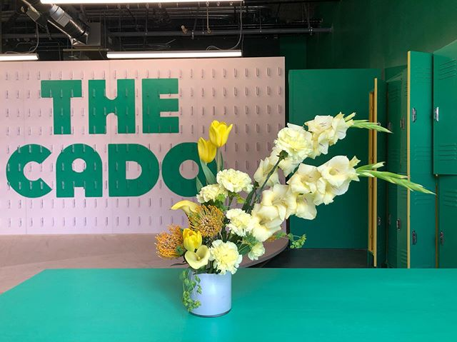 Welcome to the most (CADO)fornia thing to have ever happened! After two years of planning, we are pleased to open the doors @thecado.co this Thursday.✌🏽💛🥑