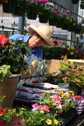 Melissa tucks plants into container Scottsdale Farm May 11, 2011