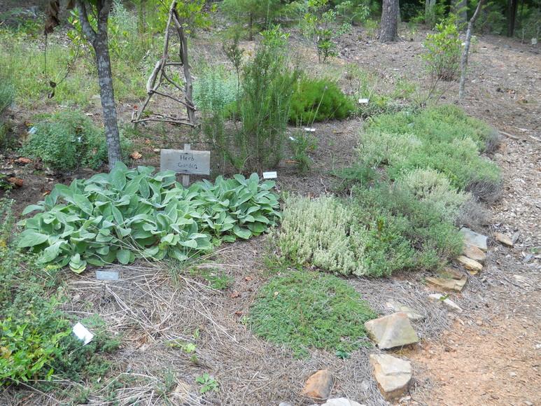 WFB Garden Trail