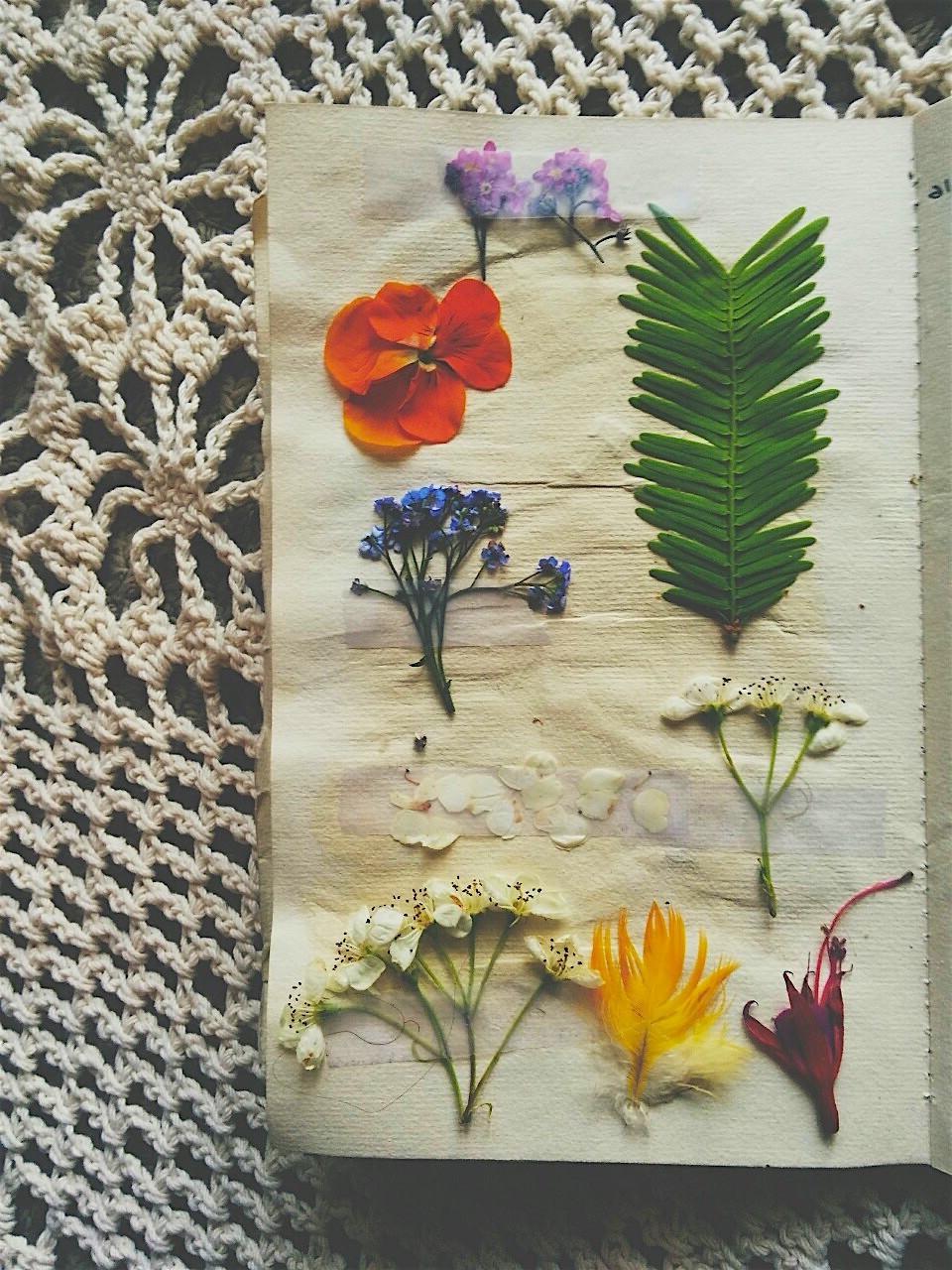 Ten Art Journal Ideas and Prompts \u2014 Goodwin Creative