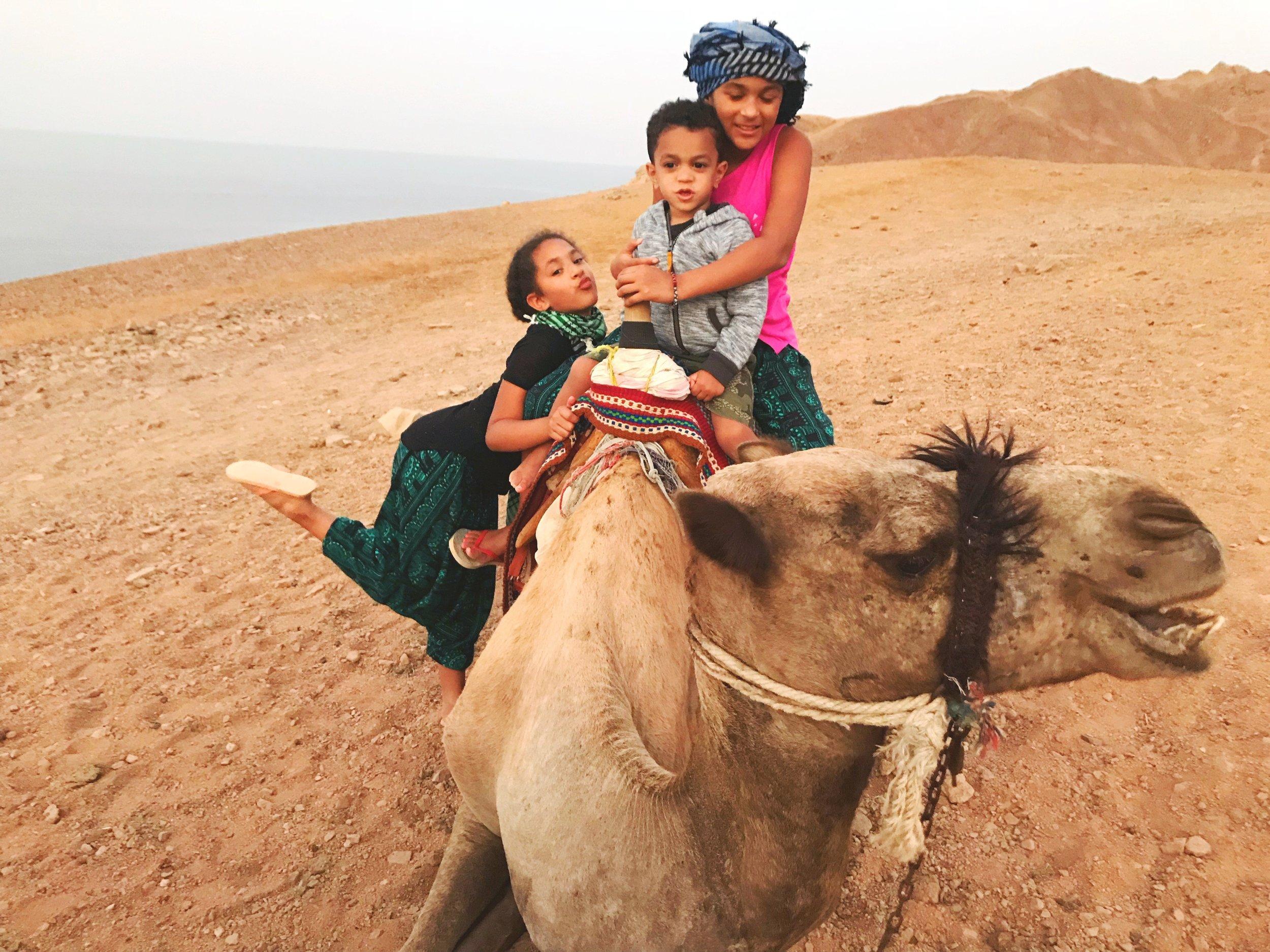 South Sinai Desert, Egypt