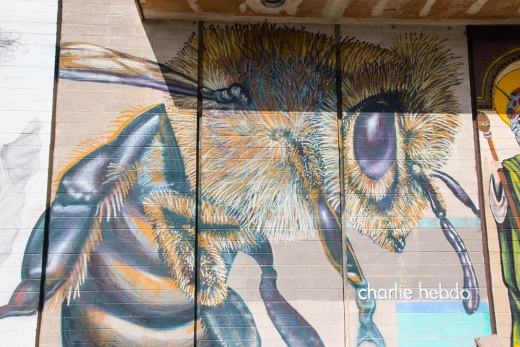 This untitled bee by Sakoia is quite large. I just love the detail in the hair. It is located on 16th Street wall of  The Hive .