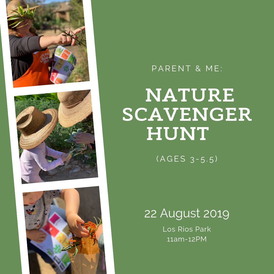 Nature Scavenger Hunt (ages 3-5.5) - 22 August 2019.png