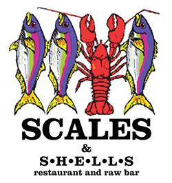 scales-shells.jpg