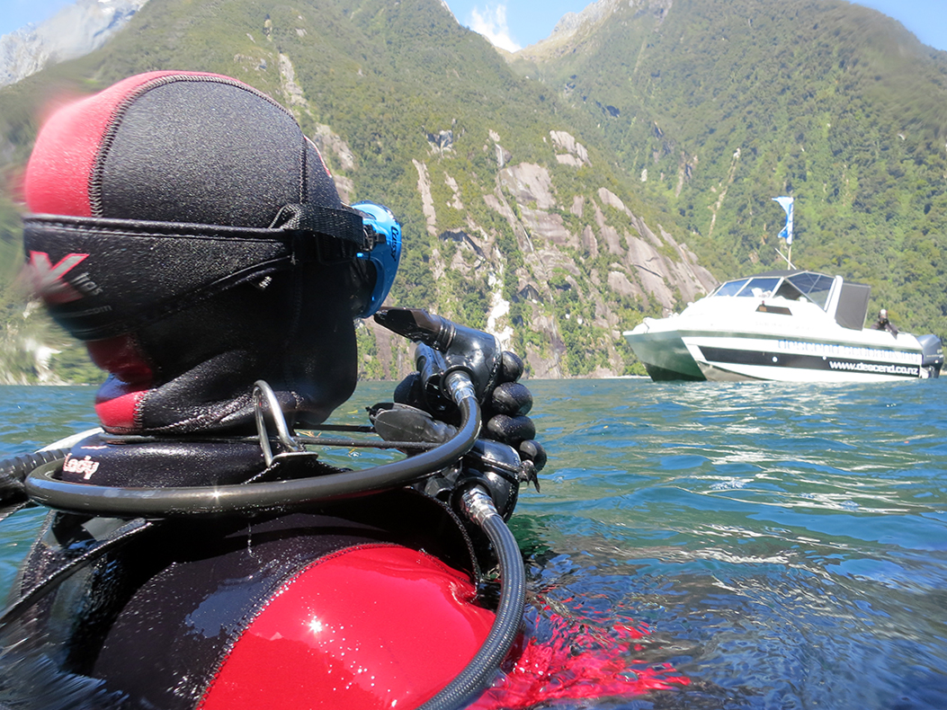 Discover Scuba - Try diving for the first time as part of our Milford Sound dive tour