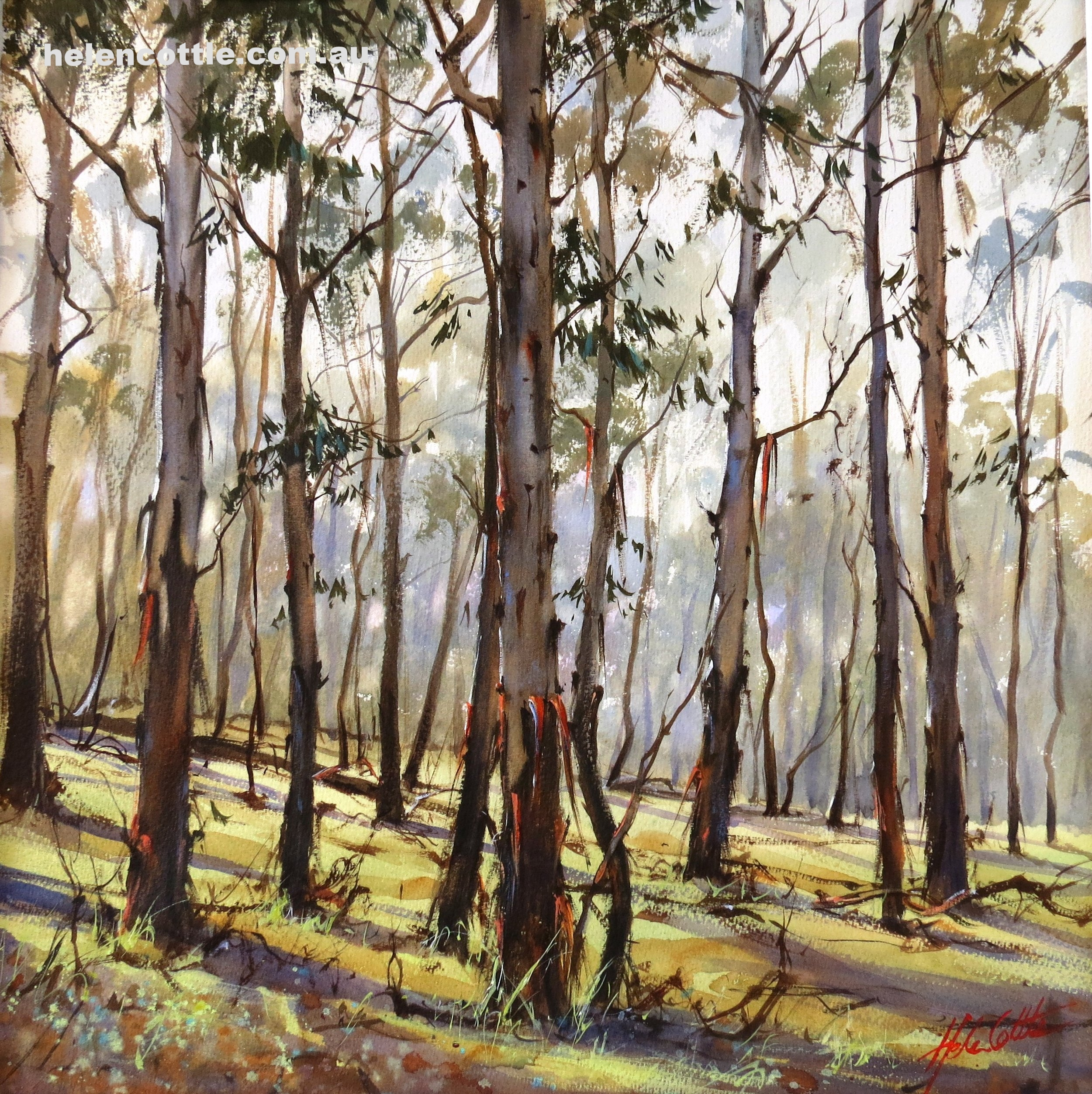 Silent Morning, Mount Macedon Watercolour on Arches paper 62x54cm By Helen Cottle.JPG
