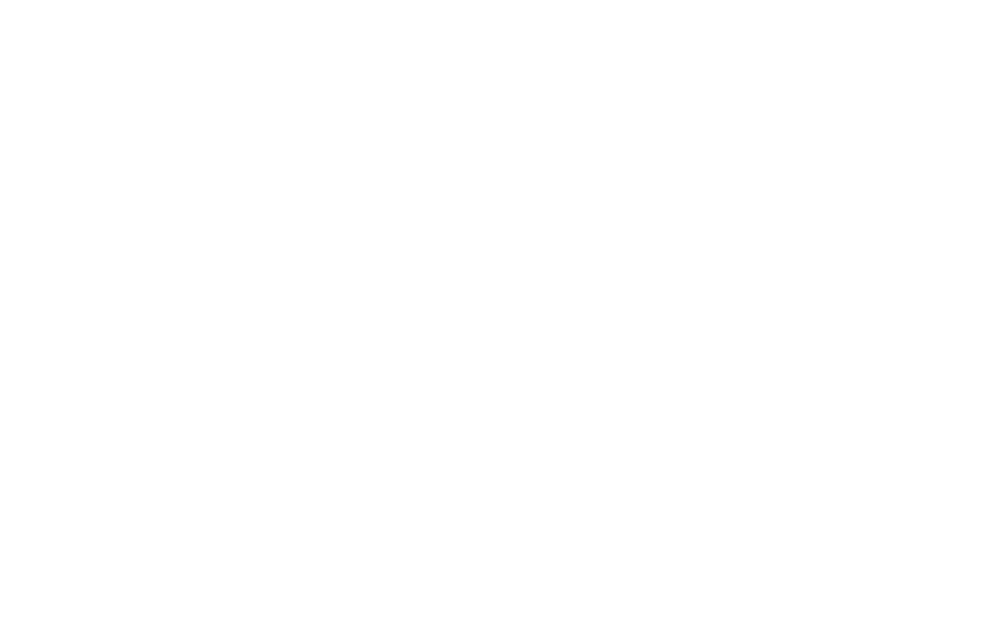 2019-WSFF Jury AwardWhite.png