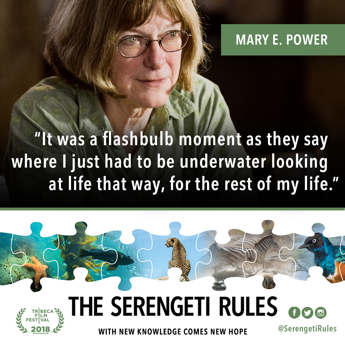 TSG_1200x1200_8_MaryPower_Quote.png
