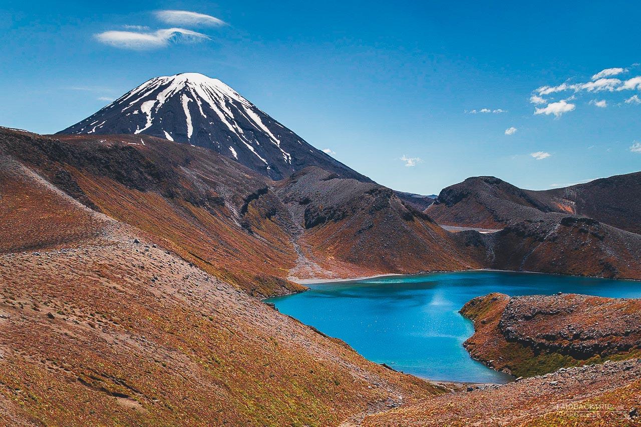 best 5 hikes in new zealand | best treks new zealand | laidback trip