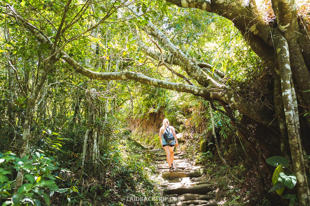 Hiking to Lagoinha do Leste beach on Florianopolis island is a great adventure.
