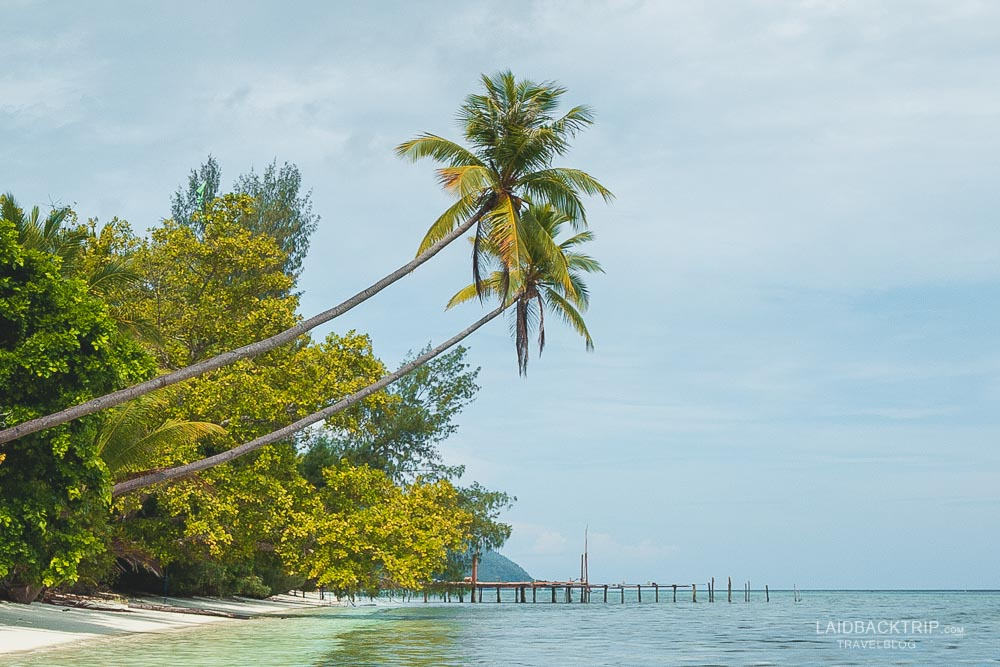 Raja Ampat travel guide on best things to do and must visit places.