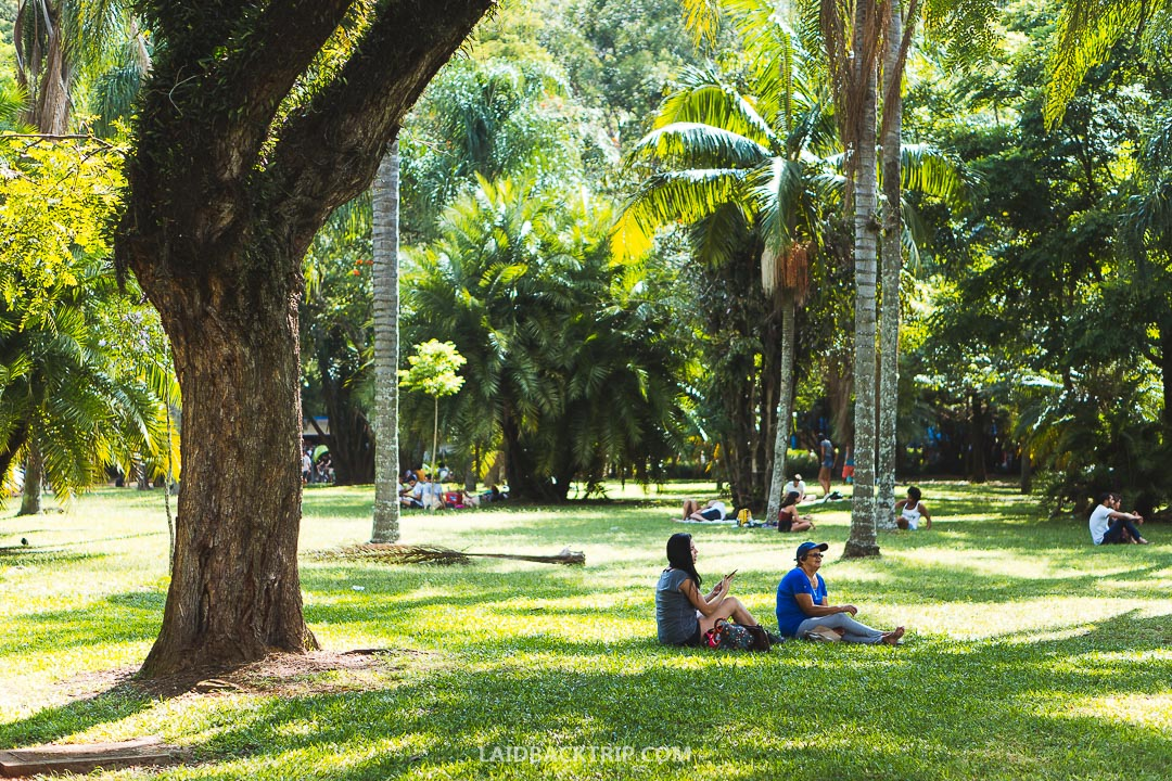 There are lots of parks you can visit in Sao Paulo.