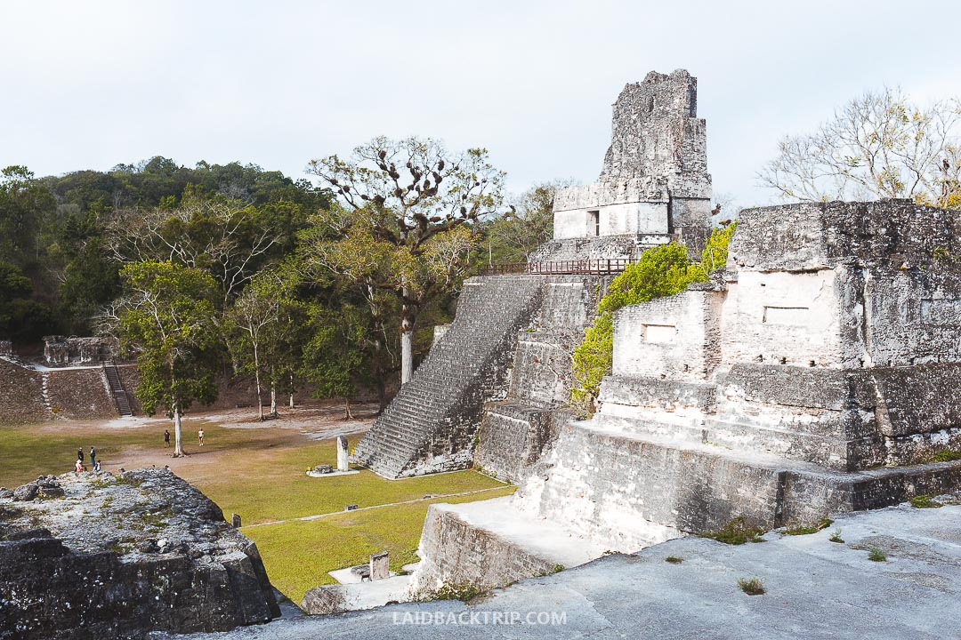 Every traveler should include Tikal visit on their Guatemala itinerary.
