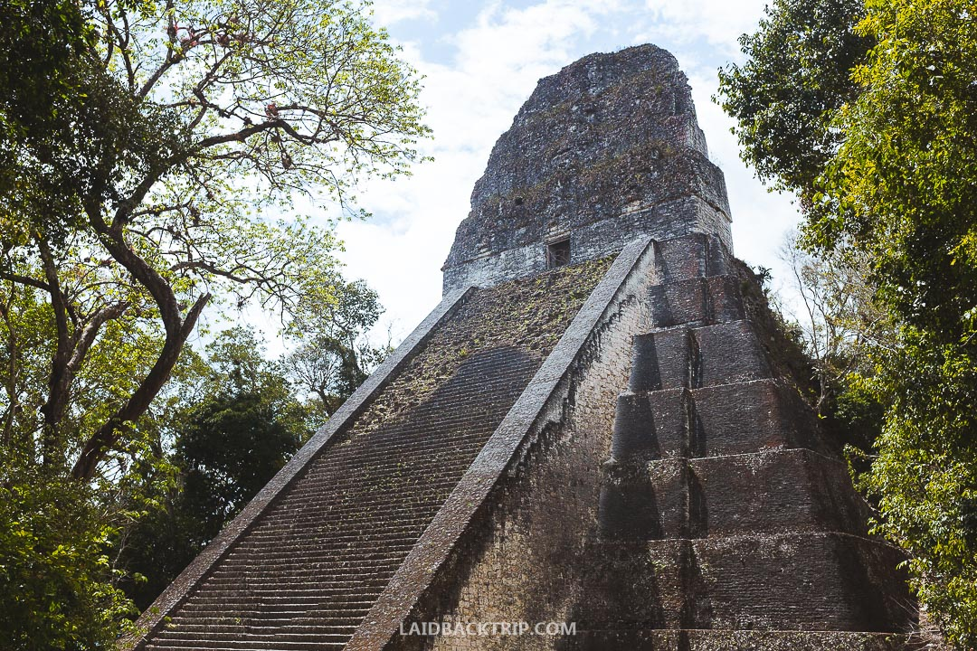 You can climb some of the main temples at Tikal ruins.
