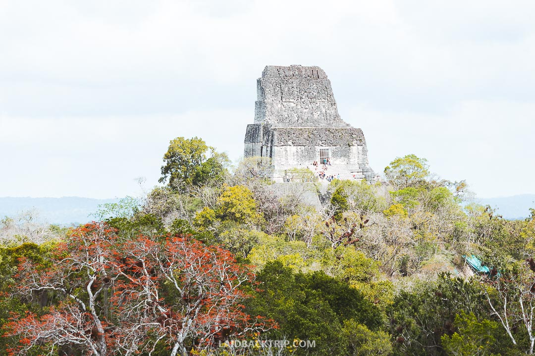 Tikal is one of our favorite historical site in Central America.