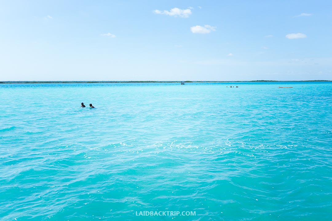 The color of the Bacalar lagoon is remarkably blue.