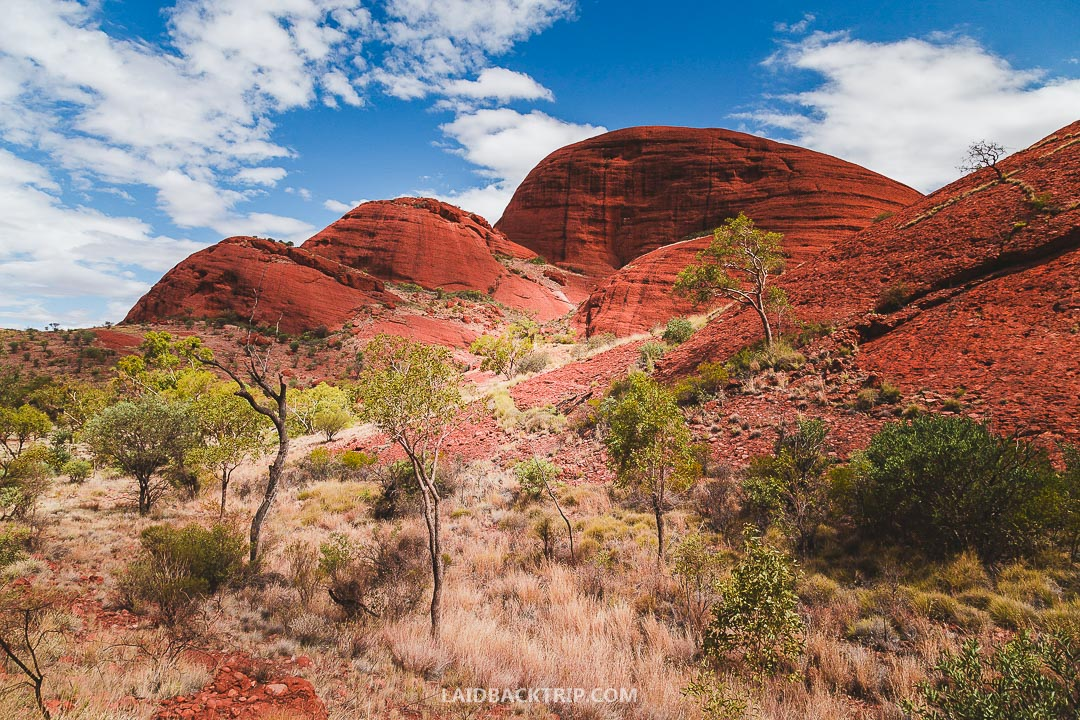 Weather in Uluru is harsh, and you need to pack sunscreen, a hat and bring a lot of water.