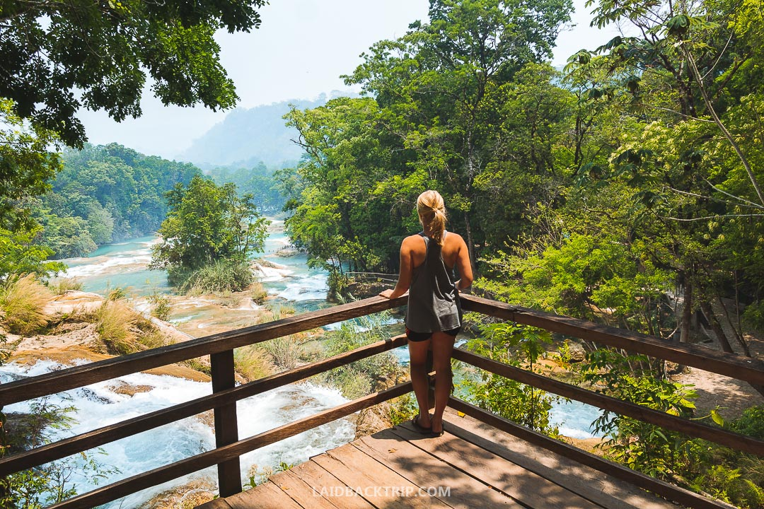 Agua Azul waterfalls in Mexico has incredibly blue waters.