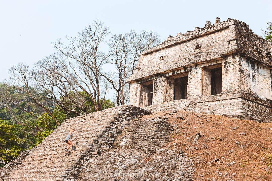 You can climb several pyramids in Palenque Ruins.