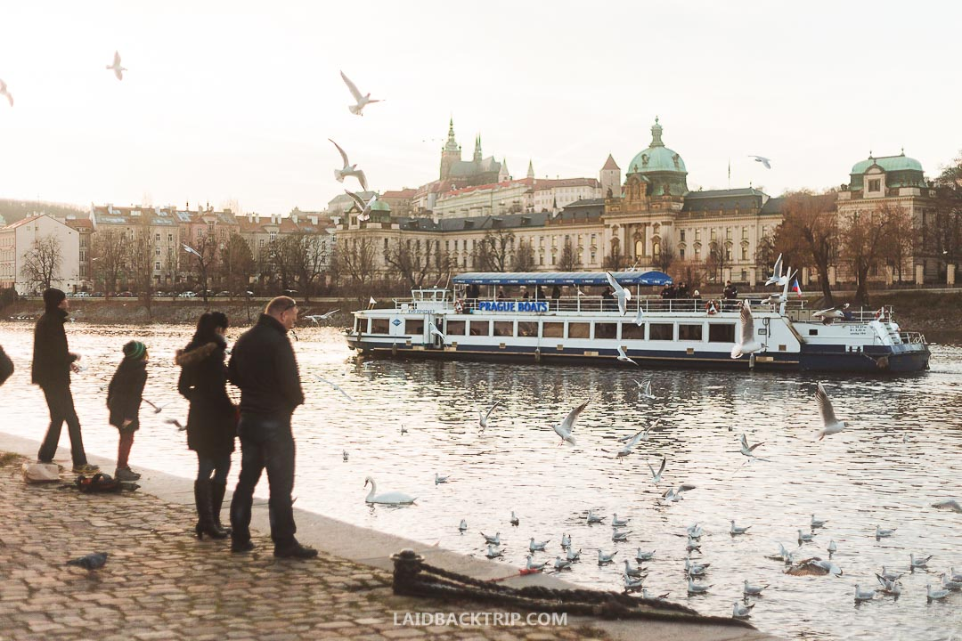 You can visit Prague all year round, but the best time is spring and summer.
