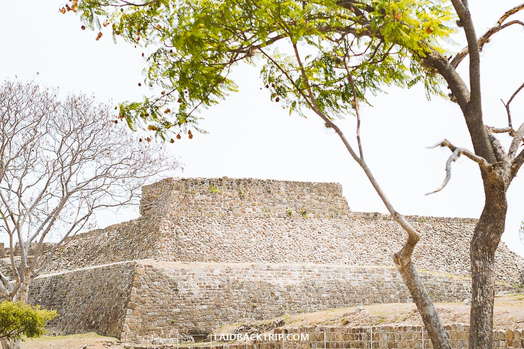 Monte Alban has an interesting history, and you should hire a guide to learn more about it.